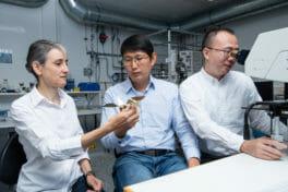 Intelligenter Mikroroboter fliegt Manöver im Magnetfeld