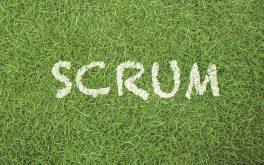 scrumprint_gras