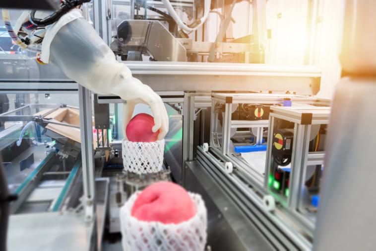 An dieser Handhabungs-Technik forscht das EU-Projekt Softmanbot
